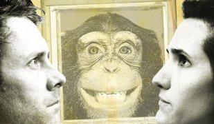dead monkey by Nick Darke o-region