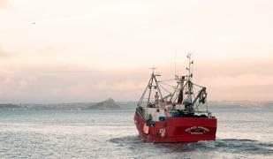 sardine boat Newlyn Cornwall
