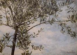 olive-greece-07s