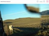 Screen Shot 2014-01-22 at 13.14.43