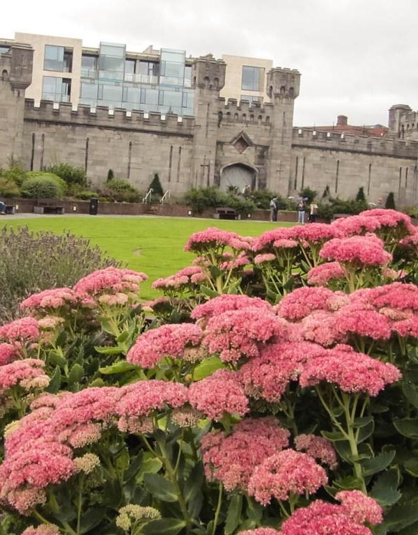 Dublin's Secret Garden