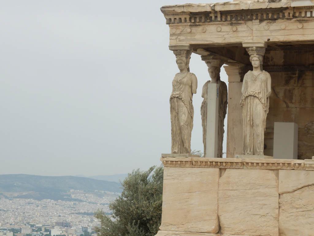 Olivia Leaves   Acropolis