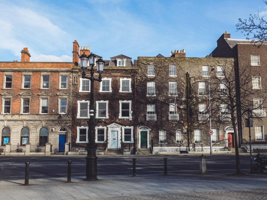 Olivia Leaves   Dublin