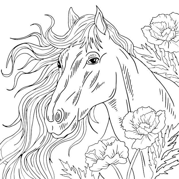 Horse coloring page, animal, illustration by Olivia Linn