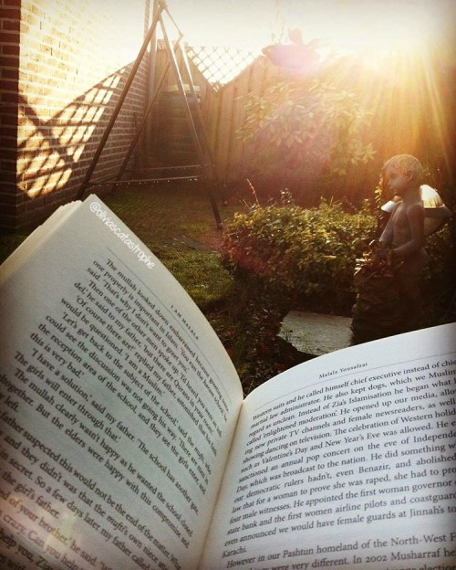 reading in the sunlight open book Olivia's Catastrophe