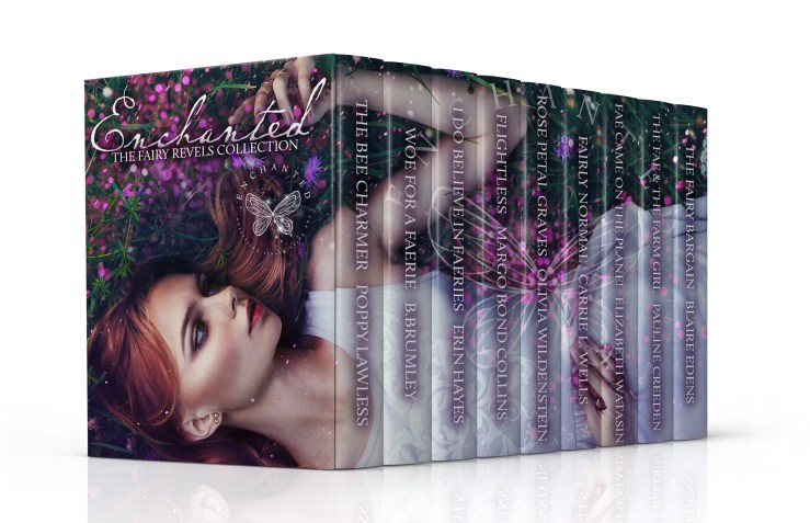 FAIRY BOXED SET 2-updated