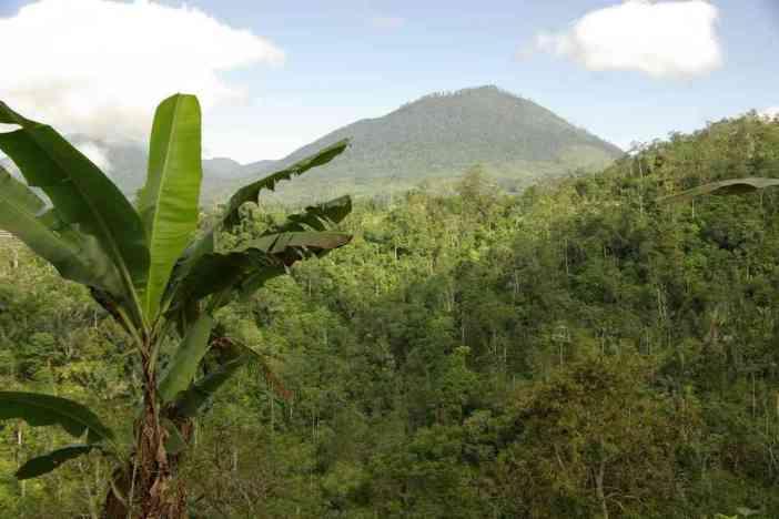 Vue sur des volcans éteints pendant notre randonnée, le 7 juillet 2007