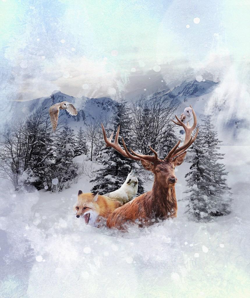 Photocomposition neige