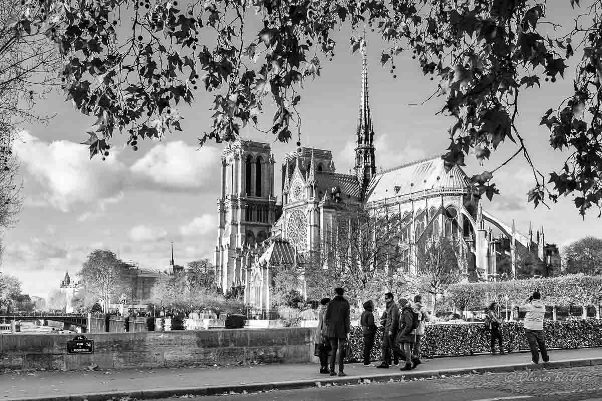 Paris N&B