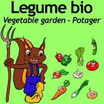 AV-legume (Small)