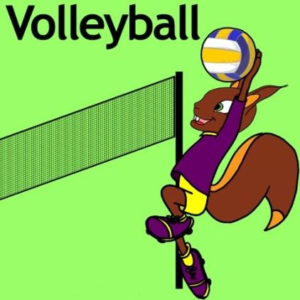 AV-volley (Small)