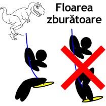 D-FlorareaZburatoare