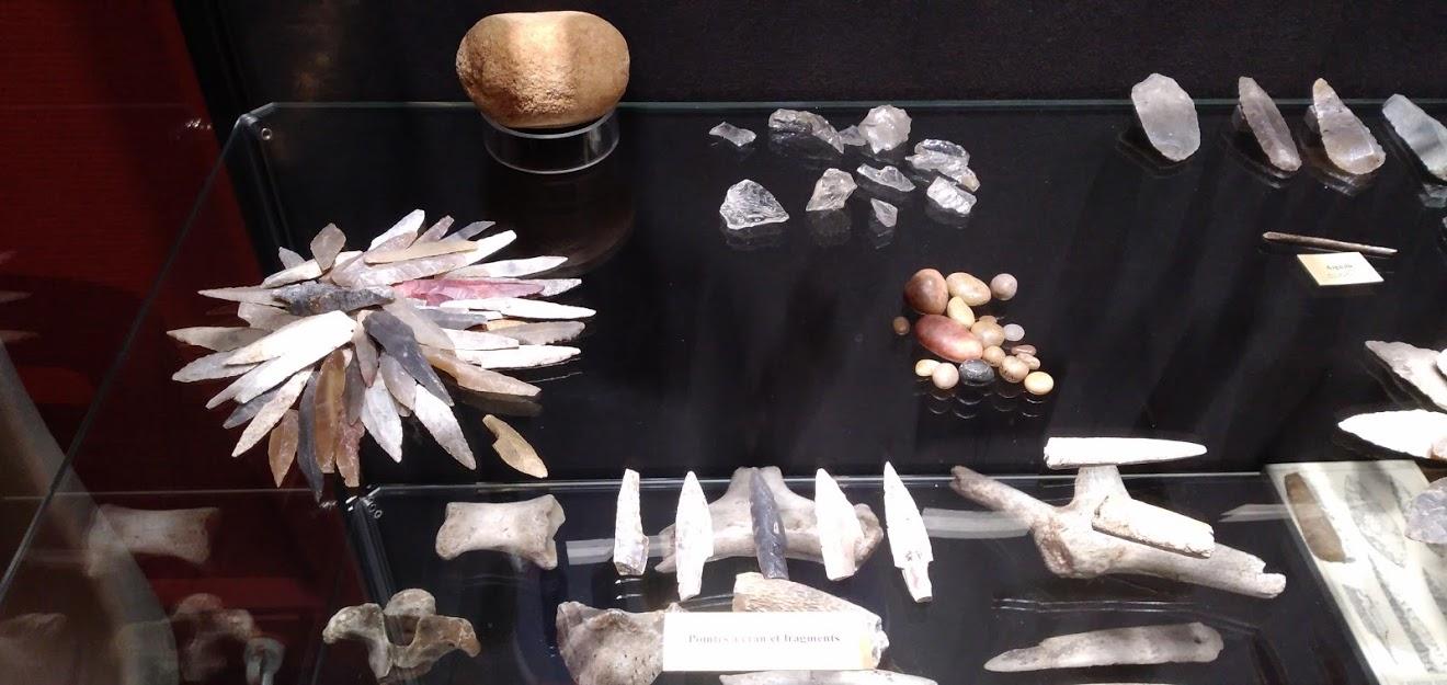 Musée d'histoire de Périgueux