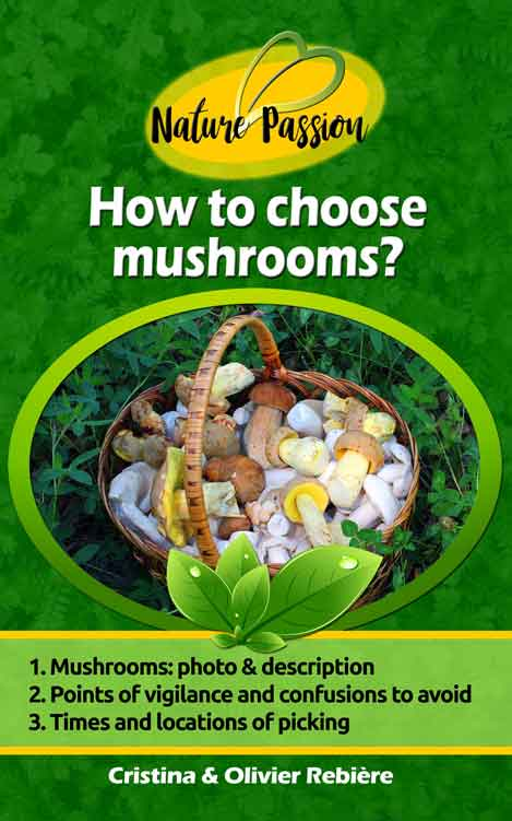 How to choose mushrooms? - Nature Passion - Cristina Rebiere & Olivier Rebiere