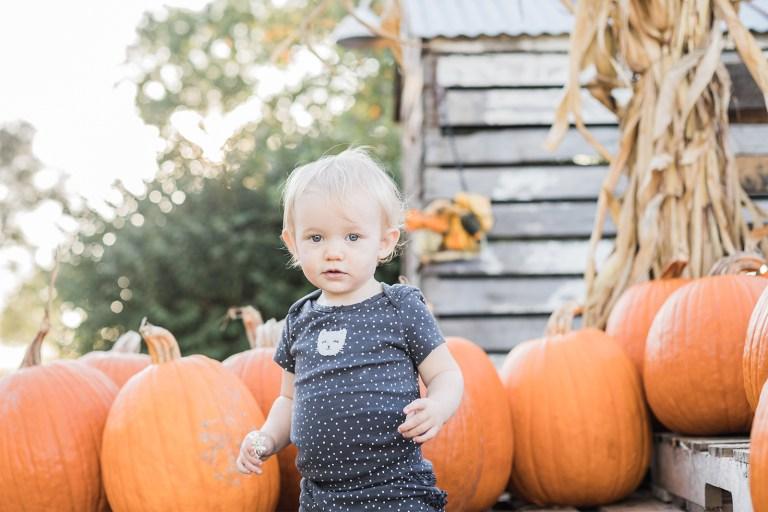 Olivine Fox - Warm Glow Candle Company - Fall Mini Session - Maryland Family Photographer - Pennsylvania Family Photographer - Pumpkin Patch Photoshoot