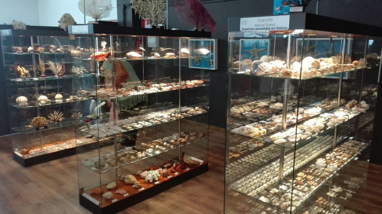 O Mares de Cedeira recibe 2100 visitantes no primeiro mes e medio