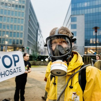 A UE decide autorizar o polémico herbicida glifosato máis cinco anos