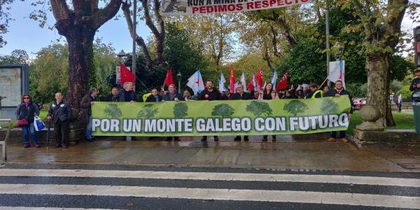 A manifestación 'Por un monte galego con futuro' percorre as rúas de Compostela