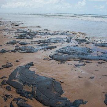 Até 132 praias do Brasil apareceram cheias de óleo