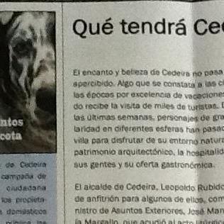A fidelidade dos cans