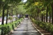 Avinguda de les Corts Valencianes
