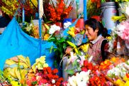 24 cusco market flower vendor