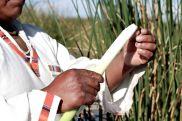 51 lake titicaca reed demonstration