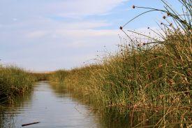 57 lake titicaca reed path
