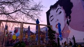the sunset matched the elizabeth taylor mural at dacha PERFECTLY.