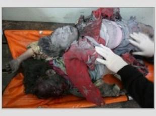 olocausto-palestina-palestinian-holocaust.jpg