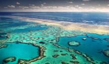 Κάτι περίεργο συμβαίνει στον μεγάλο κοραλλιογενή ύφαλο