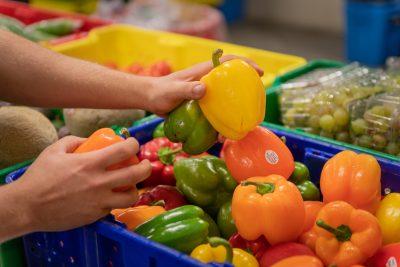 Commercial photoshoot for BC foodSHARE Program