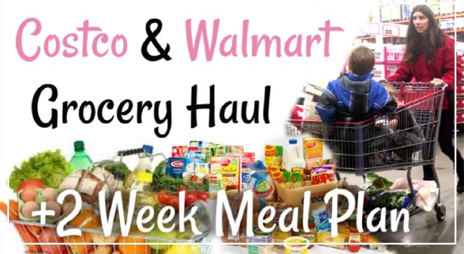 HUGE Costco & Walmart Grocery Haul + 2 Week Meal Plan Traveling | Momma From Scratch