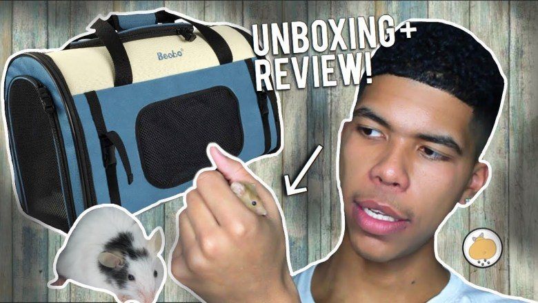 MEET My 5 PET MICE! + BECKO Product Unboxing/Review! | Pet Mice