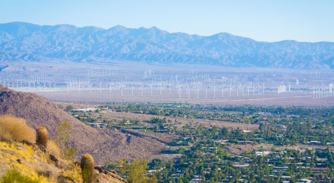 Tell Us Your Best Palm Springs Travel Tips