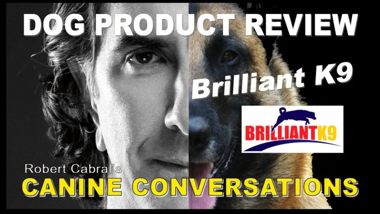 Brilliant K9 Vest – Dog Product Review – Dog Training and Products