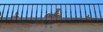 villa-sciarra-catene-1