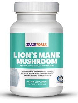 lion-mane-mushroom