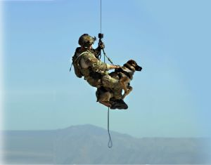 IDF operational security professional trained by Israeli special security forces experience CIVILIAN RESCUE OPERATIONS