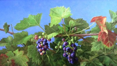 Druiven 40 x 70