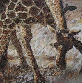 Drinkende giraffe 100 x 100