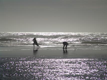 ocean_shores_428w