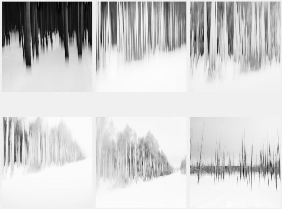 Imagined Landscapes