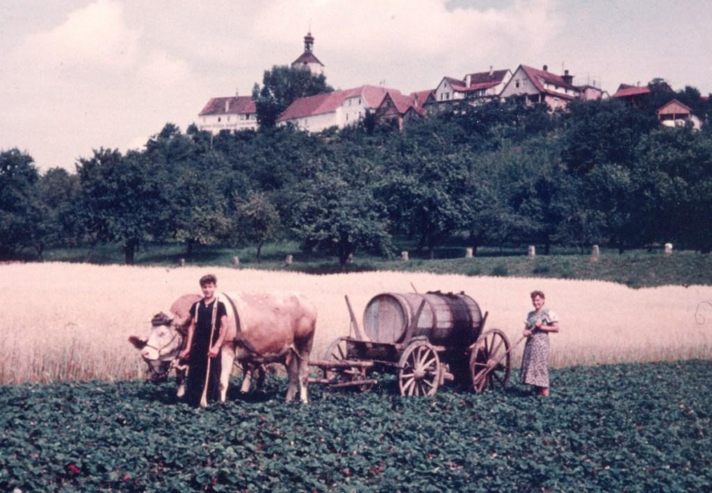 Oma Lisbeth stammt aus Winnnenden-Bürg