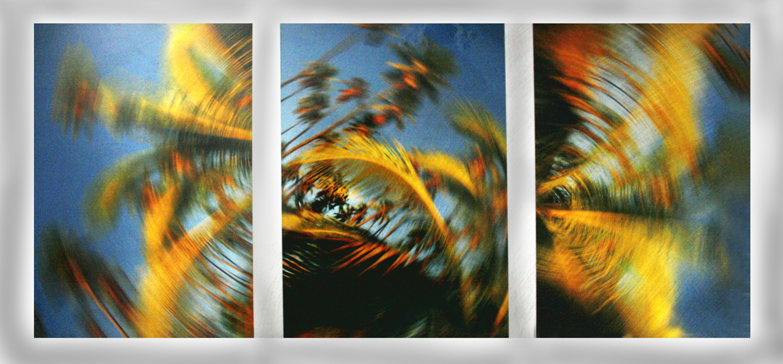 Item 217 - Turley, Windy Palms