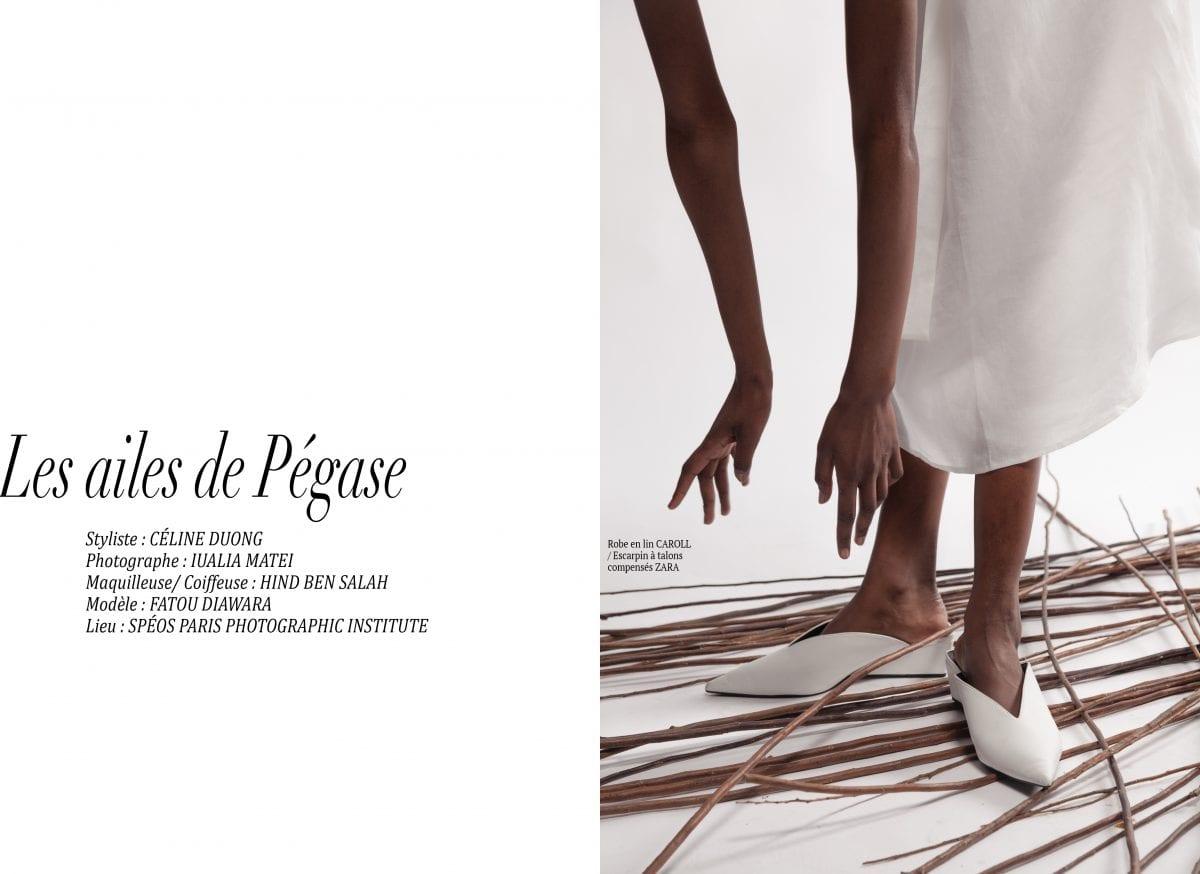 """Éditorial """"Les ailes de Pégase"""" par Celine Duong"""