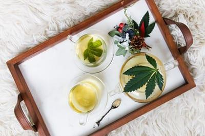 Les produits dérivés du Cannabis Omagazine