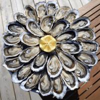 Omag.2019_Gastronomie_BAF_1_ostraregal