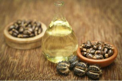 Les huiles végétales, l'huile de ricin