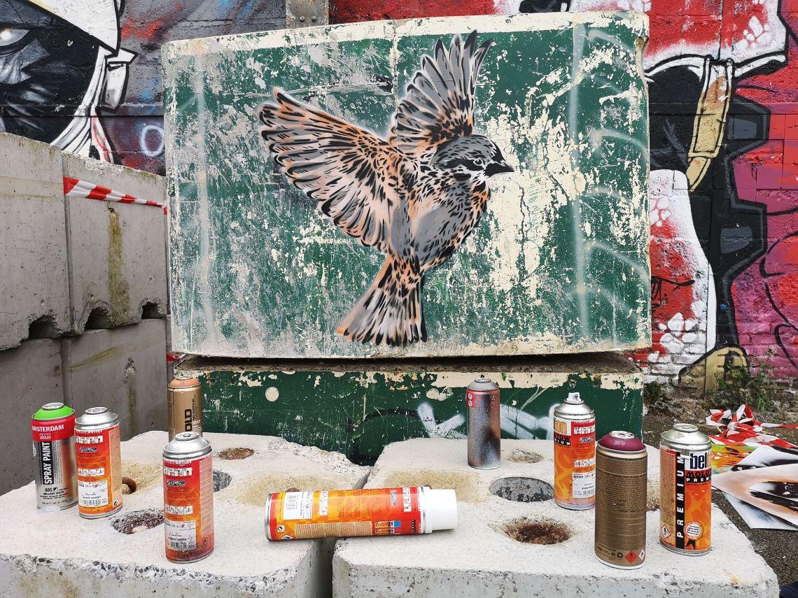 Femmes et street art en France : le parcours de Nice Art